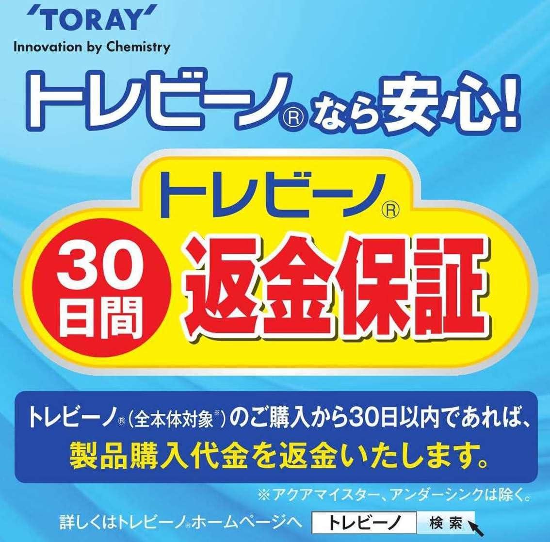 TORAY torayvino Pitcher-Type Water Purifier 1.1L PT302SV