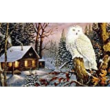 American Heritage Royal Raschel Throw Night Watch Owl by Northwest