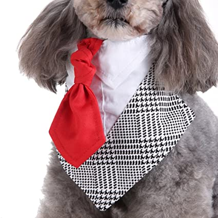 POPETPOP Perro Mascota Collar Perro Traje Corbata Suave Resistente ...