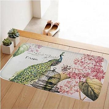 ToLuLu Small Doormat Low Profile Door Mat Door Indoor/Bedroom/Front Door /Bathroom