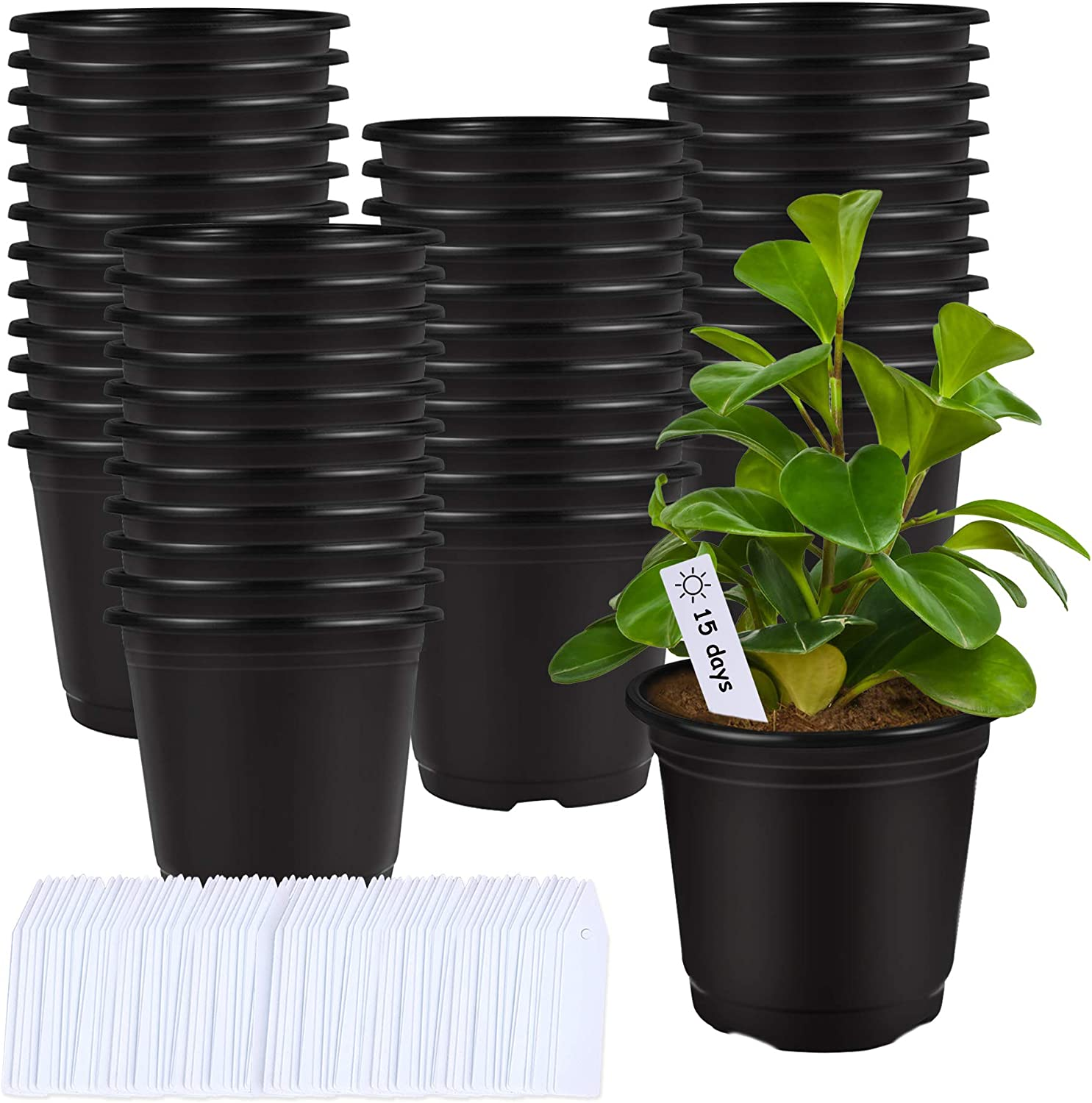 75 Pcs 0.5 Gallon Black Plastic Plant Nursery Pots 6 Inches Seed Starting Pots Containers with 100 Labels