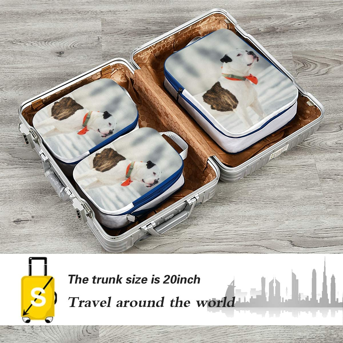 LUPINZ Funny American Bulldog Travel Luggage Packing Organizers 3 Pieces Travel Cubes