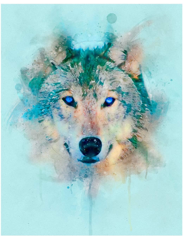 Sketchbook Cute Wolf Sketchbook For Adults Children Animals