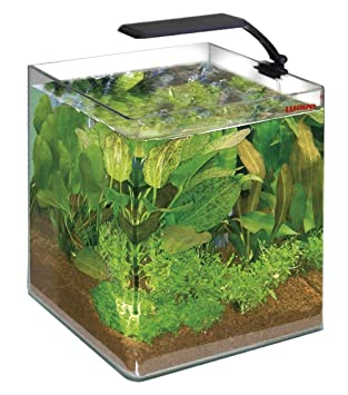 Wave Box Cubo 25 Orion LED Acuario 25 x 25 x h 30 cm 16.5lt + incluye red cm. 8 x 10: Amazon.es: Deportes y aire libre