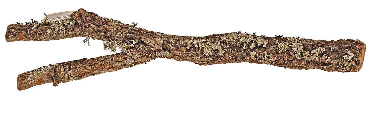 AMTRA Branche de Liège Bois d'Ornement pour Aquariophilie 90 cm A8050153