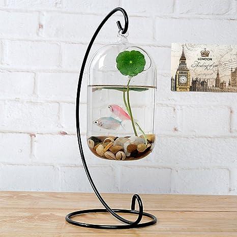 Pecera decorativa de cristal transparente, colgante y con soporte de metal