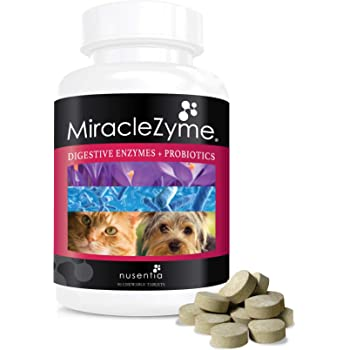 Amazon Com Probiotics For Dogs With Enzymes Chewables