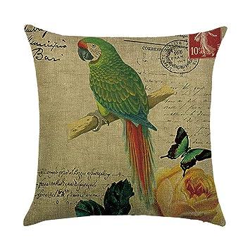 Amazon.com: LAMEIDA - Funda de cojín decorativa para sofá o ...