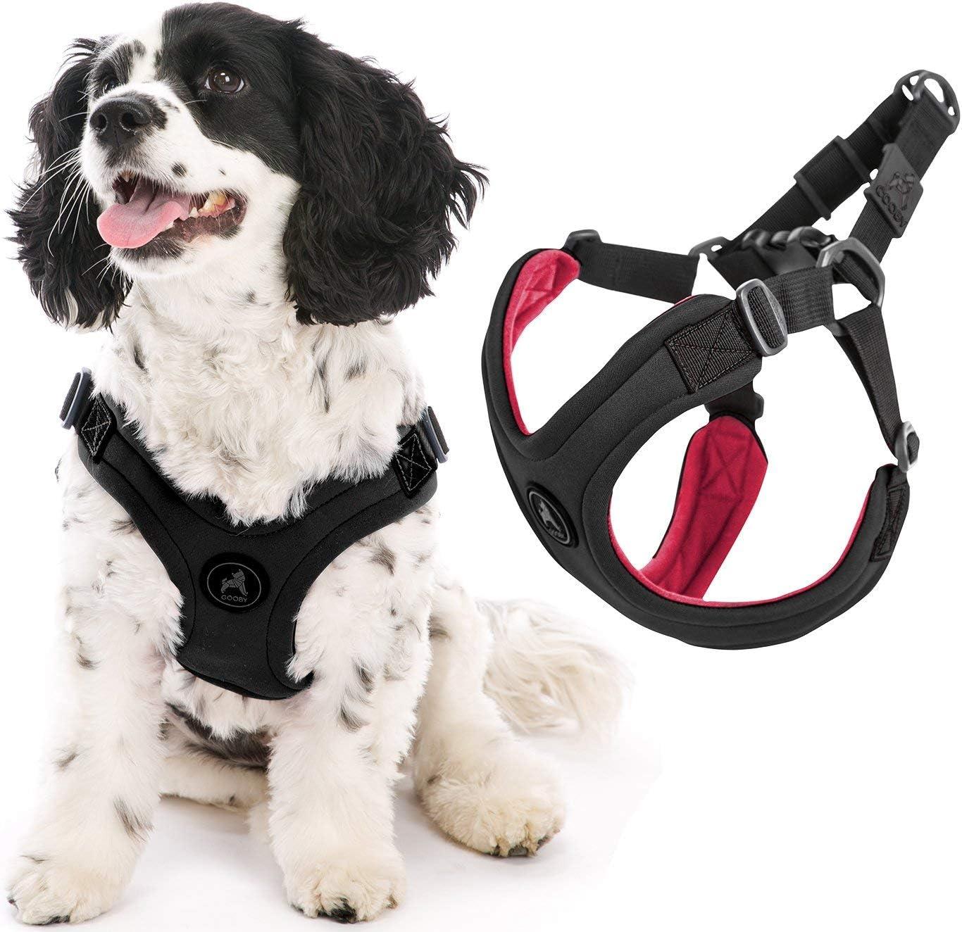 Tidy Globe Exercise Harness Sports Set Accessory Kit 2pcs Black