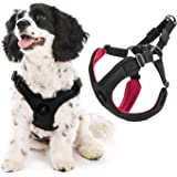 Gooby Dog Harness - Escape Free Sport Patented Step-in Neoprene Small Dog Harness - Perfect on The Go Four-Point…