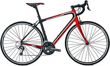 Endurance Focus IZALCO ERGORIDE TIAGRA 20G CARBON - Bicicleta de carreras (altura del cuadro: 56), color negro, rojo y blanco: Amazon.es: Deportes y aire libre