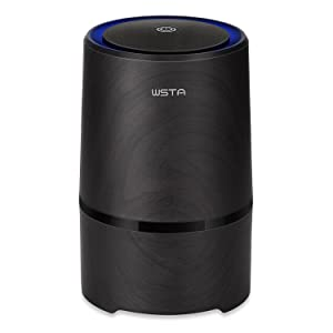 WSTA Air Purifier with True Hepa Filter,Desktop Odor Allergies Eliminator for Smokers, Smoke, Dust,Mold, Home and Pets,Air Ionizer Cleaner with Night Light