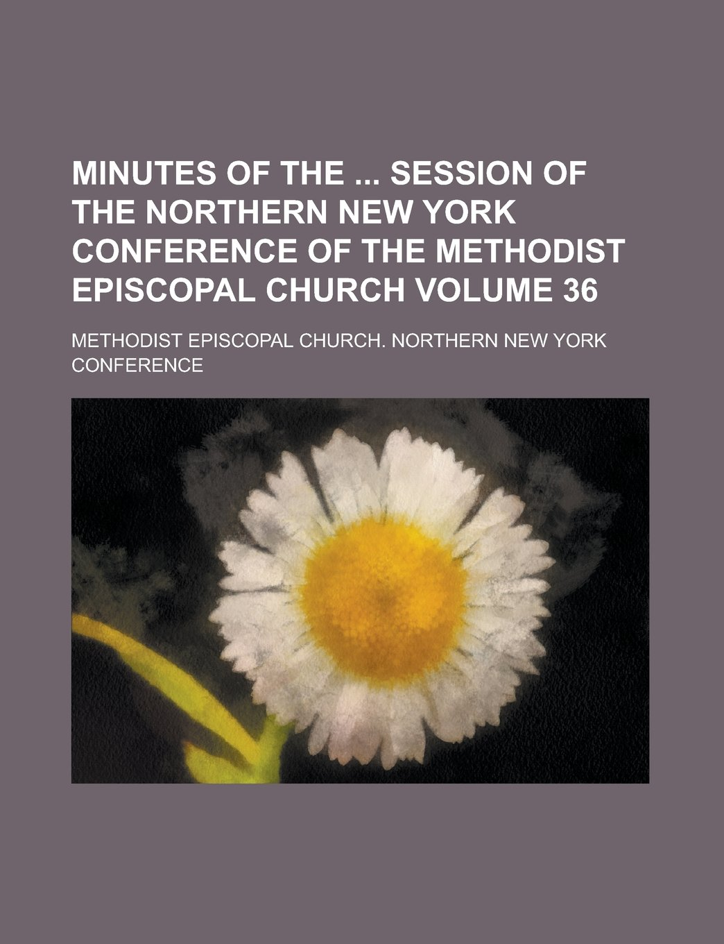 Download Minutes of the  Session of the Northern New York Conference of the Methodist Episcopal Church Volume 36 pdf