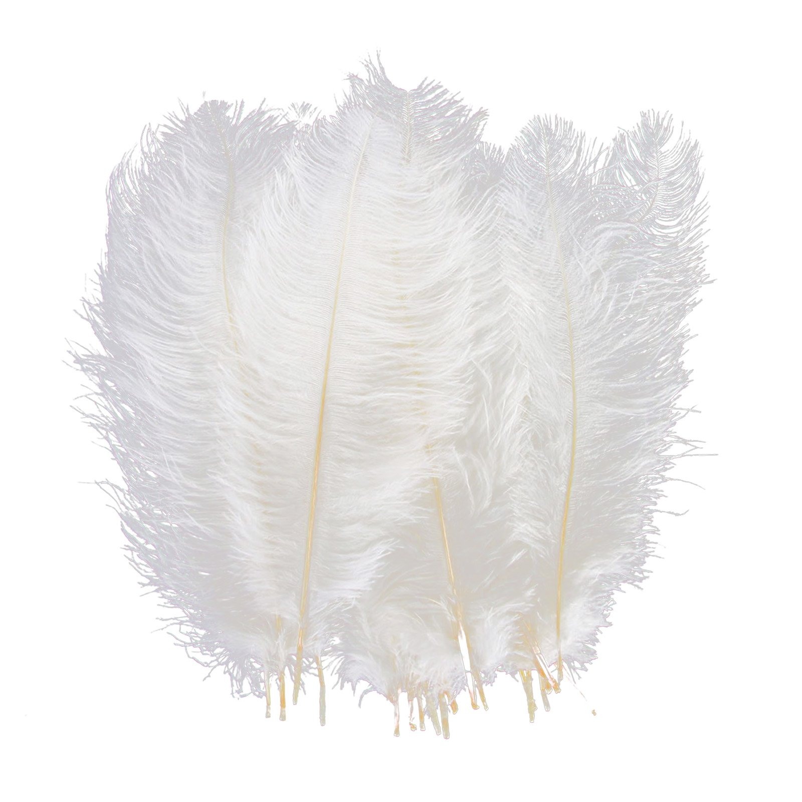 Ostrich Feathers Craft 6-10inch (18-25cm) Plume for Wedding Centerpieces Home Decoration (White, 100 pcs)