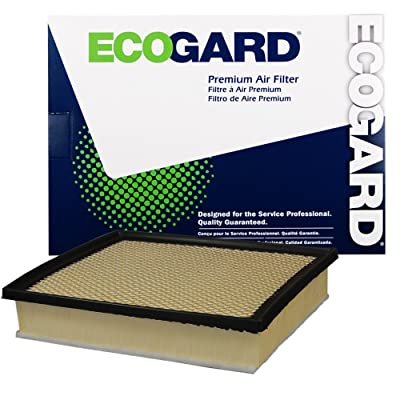 EcoGard XA10242 Premium Engine Air Filter Fits Toyota Tacoma 3.5L 2016-2020, Tundra 4.6L 2014-2020, Sequoia 5.7L 2014-2020: Automotive