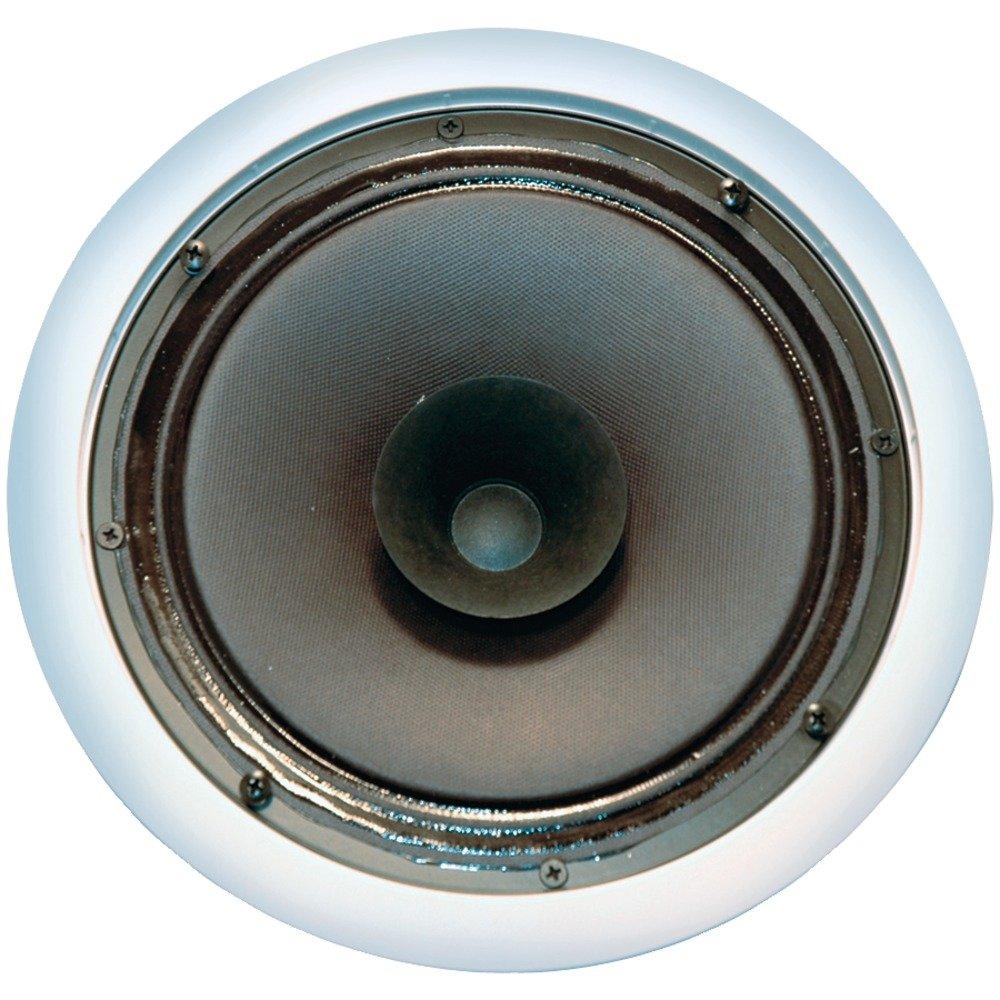 OEM Systems SC-800 8- Inch Full Range Speaker
