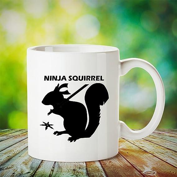 Amazon.com: NINJA SQUIRREL – Regalo secreto para cumpleaños ...