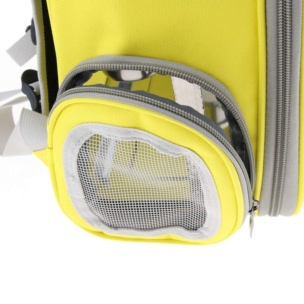 Perfk Copertura Trasparente Viaggio Viaggio Viaggio Pappagallo Uccello con 1 Set Stand Tazza Pannolino Giallo 0f4d08