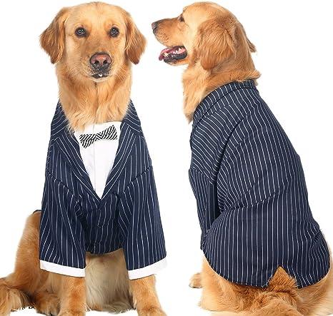 Ropa grande para perro, traje de boda tipo esmoquin para perro ...