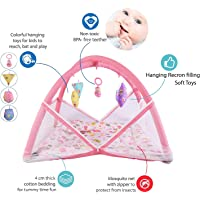 Baby Fly Baby Bedding Set with Play Gym and Mosquito Net Bed (0-6 Months) (Pink Butterfly)