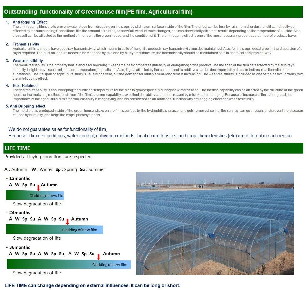 Amazon com: Tajopyo, UV Protected Greenhouse Film