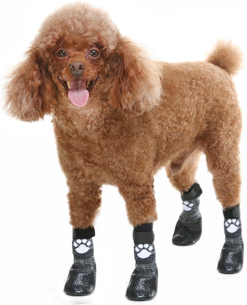 Guía de botas para perros