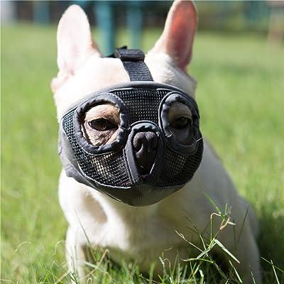 JYHY Short Snout Dog Muzzles