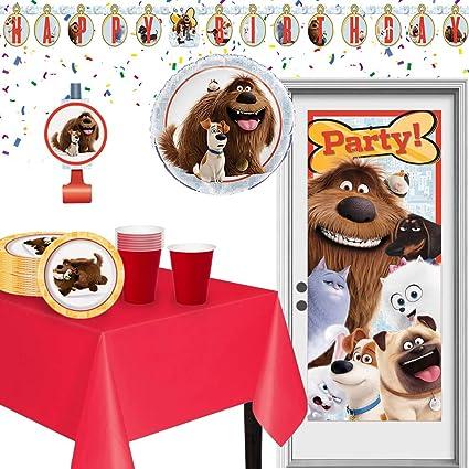 Amazon.com: Kit de fiesta de cumpleaños de la vida secreta ...