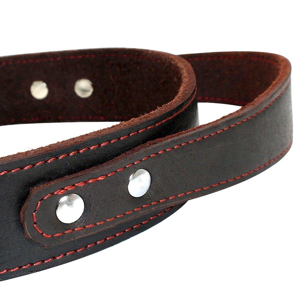 B/óxer Collar para Perro de Piel aut/éntica con asa Resistente para Perros medianos y Grandes Pitbull Bulldog para Entrenamiento Doberman
