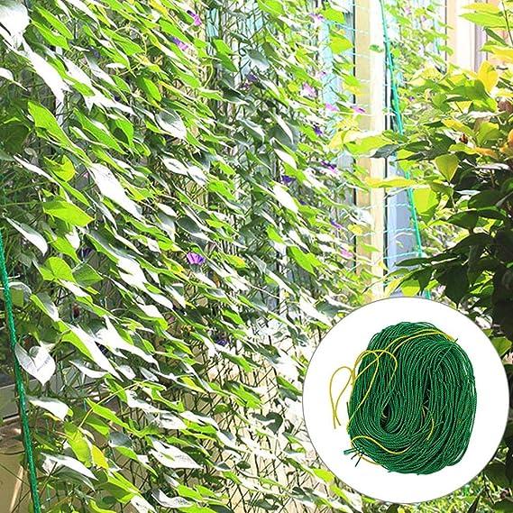 Centishop - Red de Malla para Plantar Plantas y pájaros, Color ...