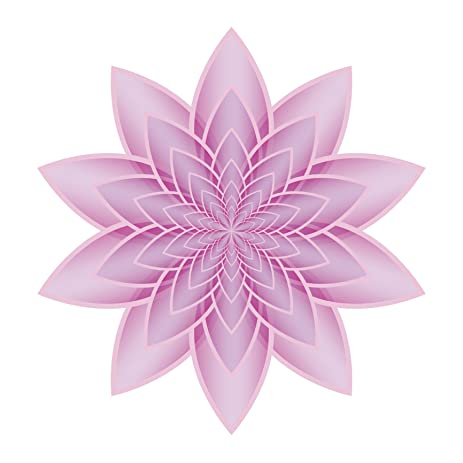 Amazon pretty ombre pink optical illusion lily lotus flower pretty ombre pink optical illusion lily lotus flower icon vinyl decal sticker 12quot mightylinksfo