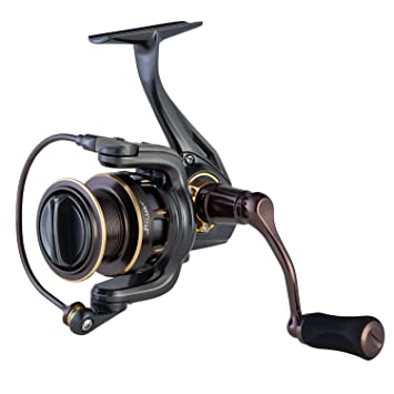 Piscifun Stone Saltwater Spinning Reel - All Aluminum, 10 Stainless Steel  Shielded Bearings, Super Powerful Smooth Fishing Reels