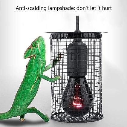 Zyyini Pantalla Anti-Calor para Reptiles, pequeña luz Redonda ...