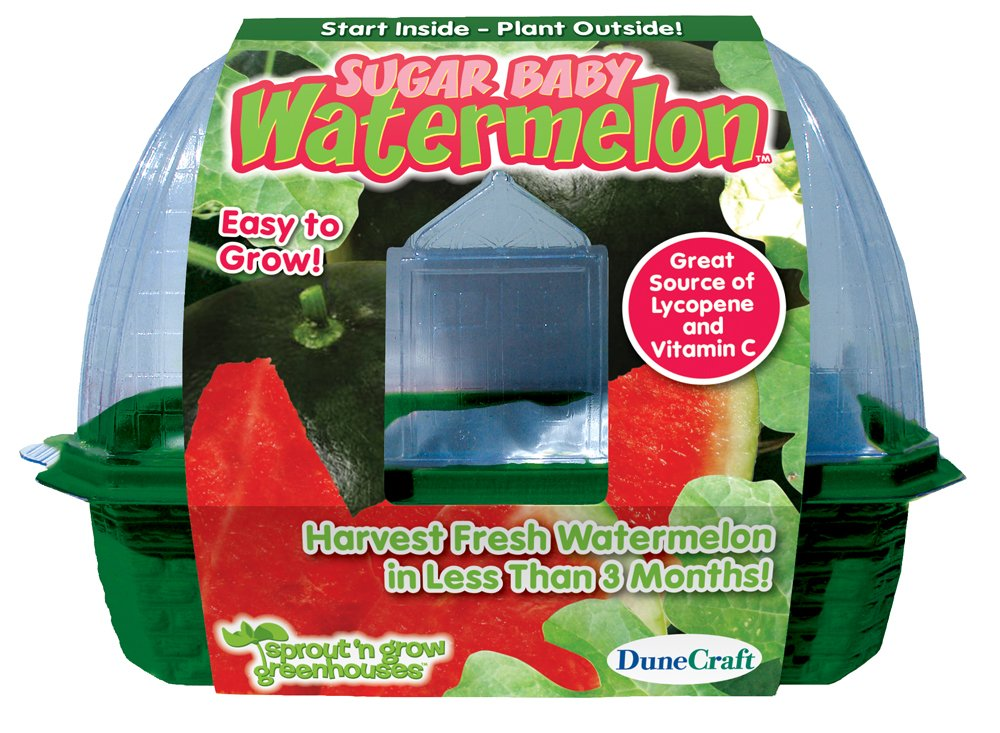 DuneCraft Sprout 'n Grow Greenhouses Sugar Baby Watermelons