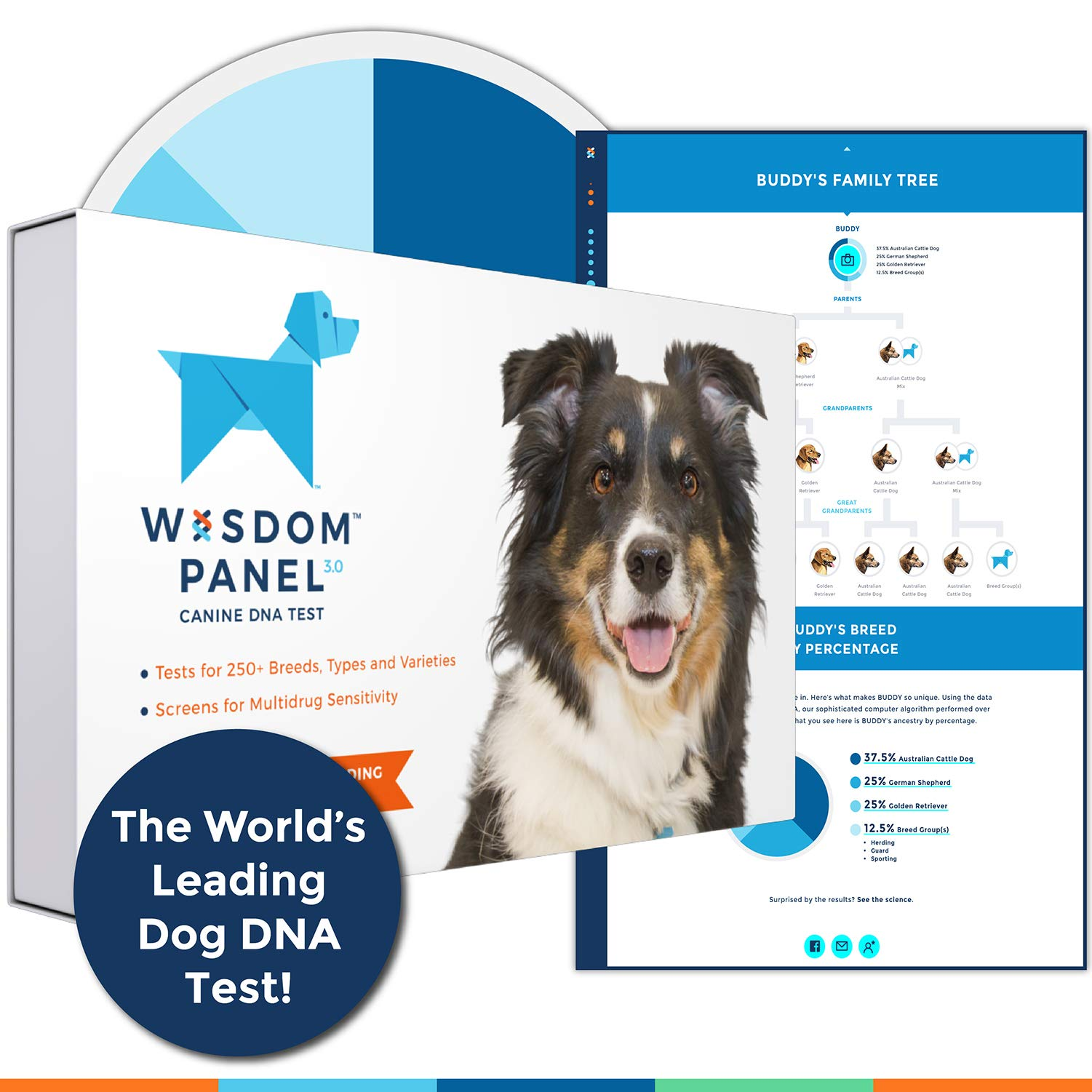 Wisdom Panel 3.0 Canine DNA Test - Dog DNA Test Kit for Breed and Ancestry Information by Wisdom Health