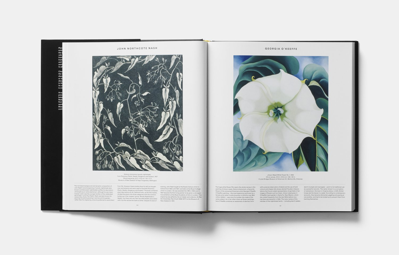 Amazon.com: Plant: Exploring The Botanical World (9780714871486): Phaidon  Editors: Books