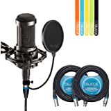 Audio-Technica AT2035 Large Diaphragm Studio Cardoid Condenser Microphone Bundle with Shock Mount, Blucoil Pop Filter, 2 20-Ft XLR Cable AND 5-Pack of Cable ​Ties