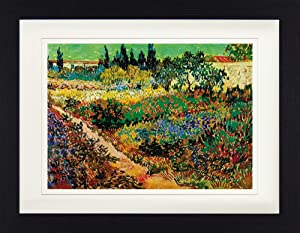1art1 Vincent Van Gogh Framed Collector Poster - Blossoming Garden and Path, 1888 (16 x 12 inches)