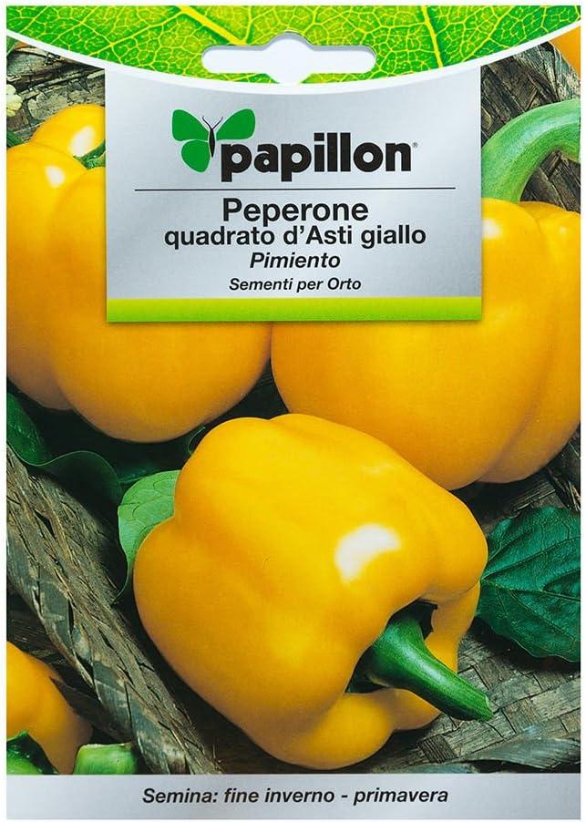 Semillas Pimiento Amarillo Cuadrado (1.5 Gramos): Amazon.es ...