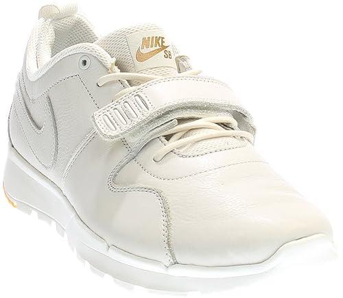 meilleure sélection 8ac94 e602f Nike Trainerendor Prem, Chaussures de Skate Homme: Amazon.fr ...