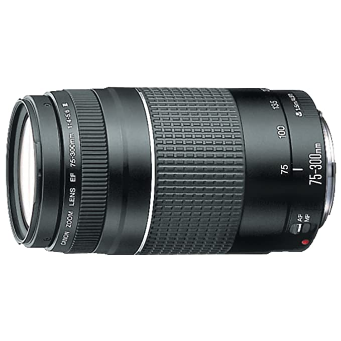 Canon EF 75-300 mm f/4-5.6 III Telephoto Zoom Lens for Canon SLR Cameras Camera Lenses at amazon