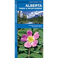 Alberta Trees & Wildflowers: A Folding Pocket Guide to Familiar Plants
