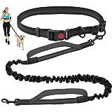 Hands Free Dog Leash for Running Walking Training Hiking, Dual-Handle Reflective Bungee , Adjustable Waist Belt, Shock Absorb