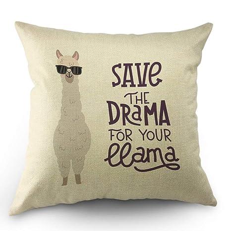 Llama Funda de almohada Alpaca linda con gafas y letras ...