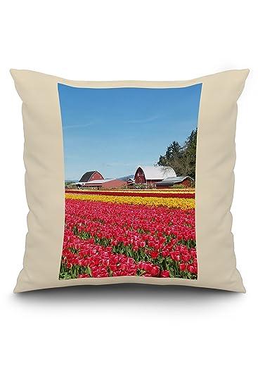 Amazon.com: Tulip Field y el Granero: Home & Kitchen