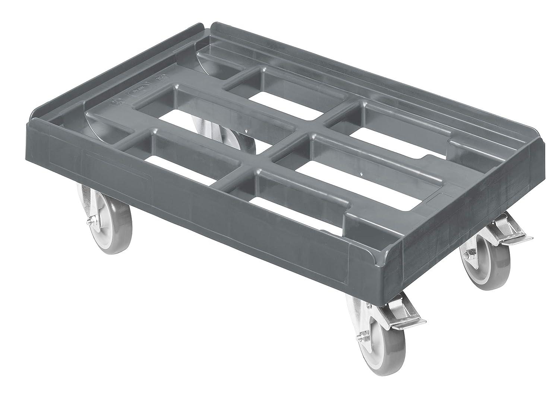 2 Stück Transportroller 300x600 mm Möbelroller Rollbrett Möbelhund Roller 200 kg