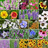 North American Native Wildflower Seed Mix - 10 Pounds, Mixed