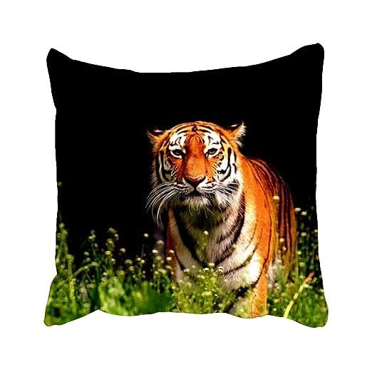 Funda de Cojín de Tiger Predator Fur Beautiful Cats Funda de ...