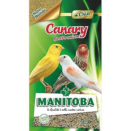 MANITOBA la alimentación de aves canary- kg 1 - Comida de pájaros