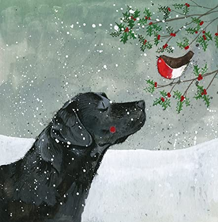 Alex Clark Charity Christmas Cards Black Labrador Betty Pack Of 5 1 Free